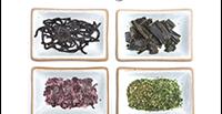 Cucinare le Alghe di Alice Savorelli