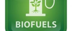 Immagine tratta da: http://biofuel-tech.com